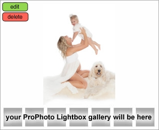 Maternity Photography with Alisa Murray